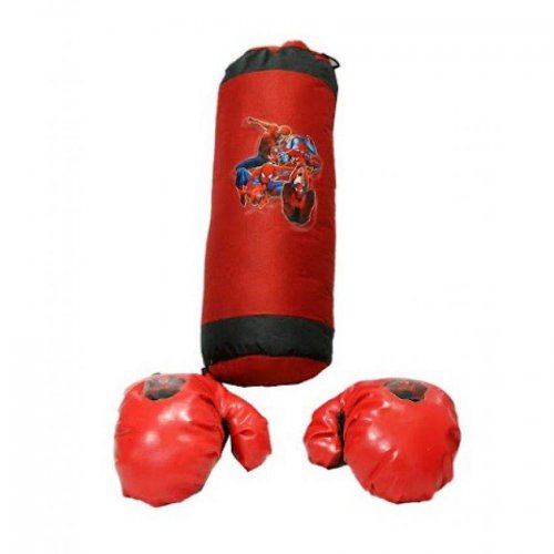 Kid's Boxing Bag & Gloves