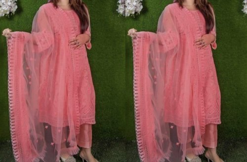Net work Salwar kameez Suit With Dupatta net-02