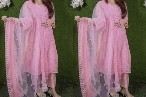 Net work Salwar kameez Suit With Dupatta net-04