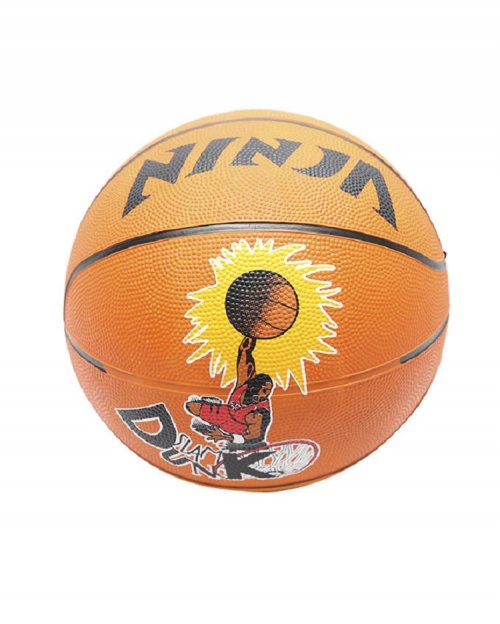 Ninja Slam dunk Basketball