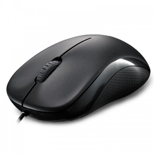 RAPOO N1130 Wired Entry Level 3 Key Mouse