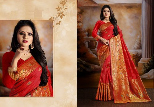 Red and Golden Embroidery Work Katan Saree For Women