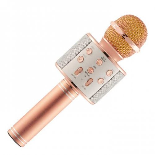 Bluetooth Wireless WS858 Karaoke Microphone MIC Speaker