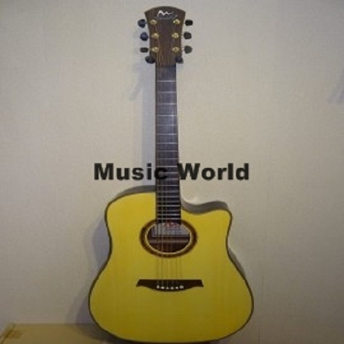 Anisha Acoustic Guitar