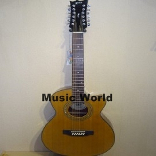 LTD 12 Strings Acoustic Guitar