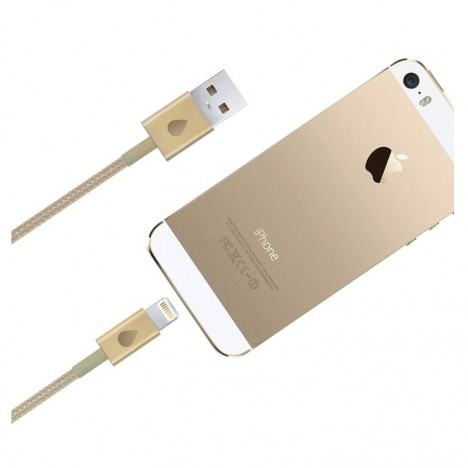 Apple iPhone 5 Gold USB Data Cable