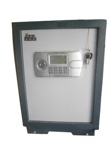 Electronic/fireproof locker - 2