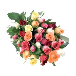 Bunch of Mixed color roses for gift (40 roses)